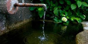 Bendita a sede