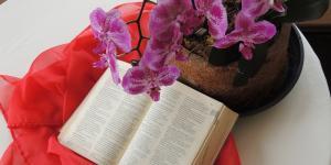 A riqueza da leitura orante da Palavra de Deus