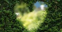 Abrir as portas do coração a Cristo