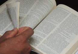 A experiência litúrgica da Palavra de Deus